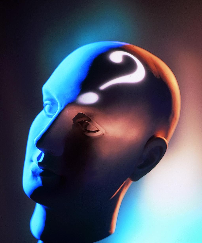 philosophy_brain